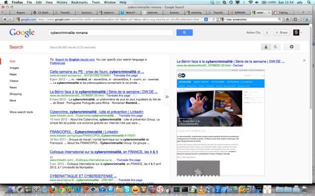 Figure 3. L'aperçu des pages dans le moteur Google.